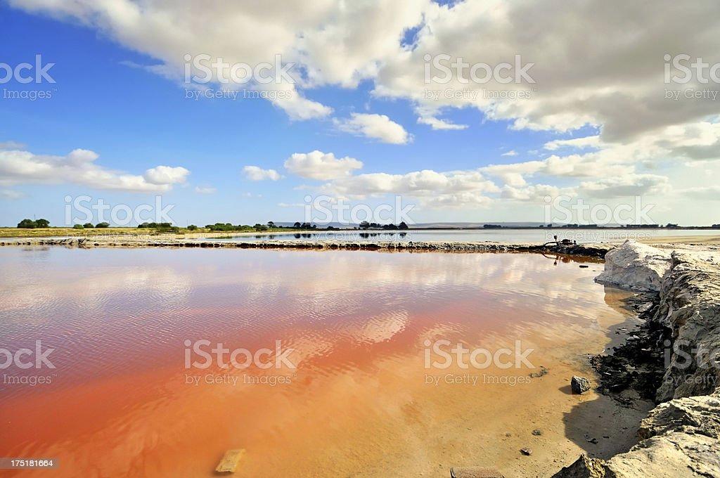 Veldrif sal sartenes - foto de stock