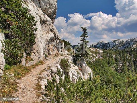 Footpath in the Velebit National Park, Croatia. UNESCO World Heritage Site.