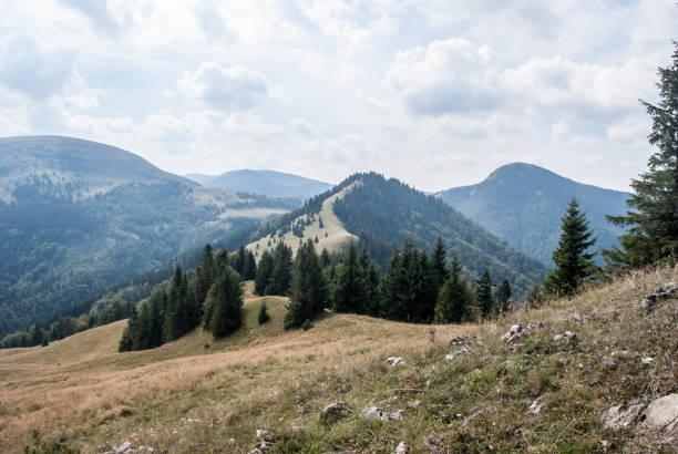 슬로바키아에 있는 산맥 velka fatra - 벨리카 파트라 뉴스 사진 이미지