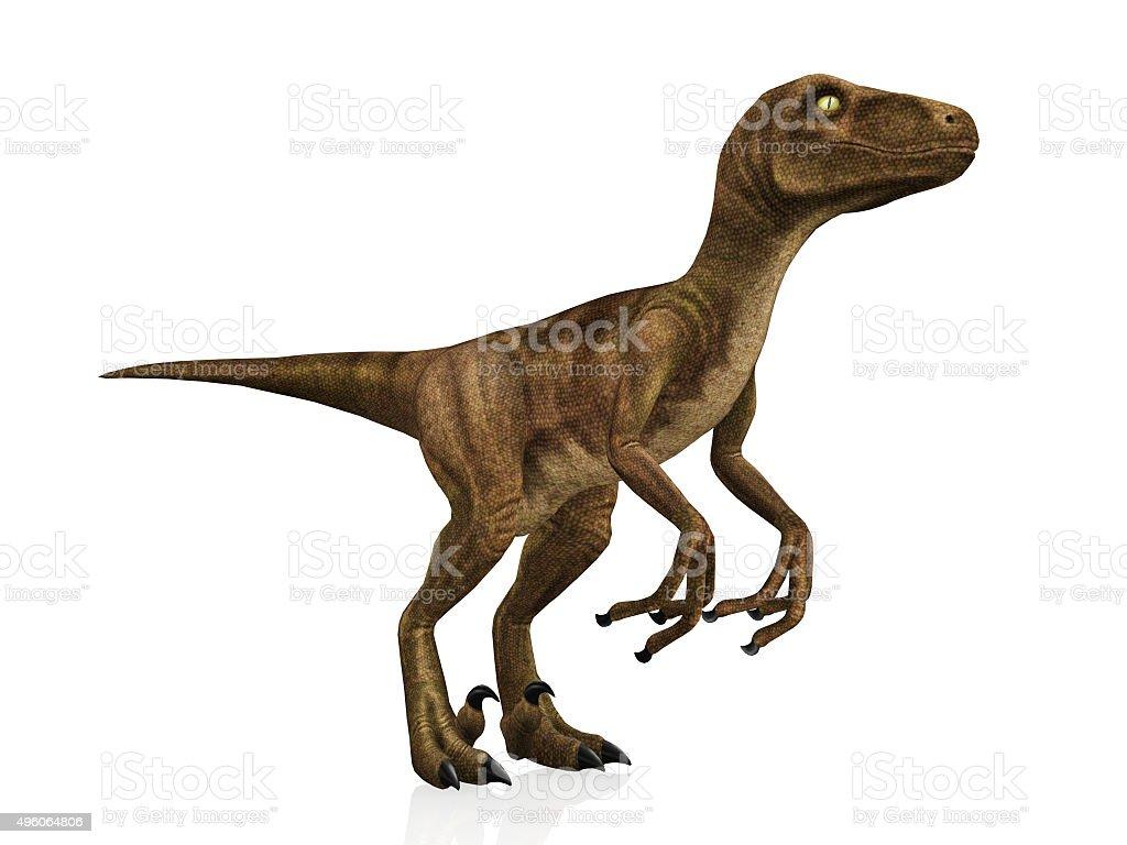 Velociraptor – Foto