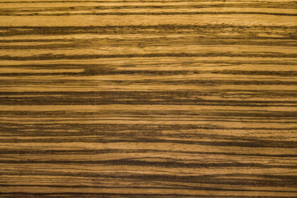 Best Zebra Wood Stock Photos Pictures Royalty Free Images