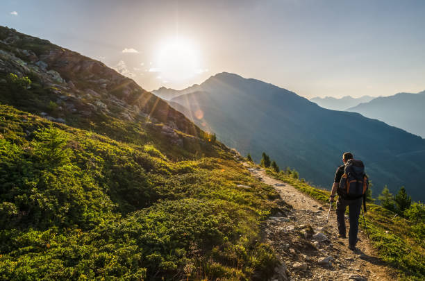 venetberg, austria - august 02 2017: single hiker in the early morning at sunrise on a trekking path in the lechtaler alps - saccopelista foto e immagini stock