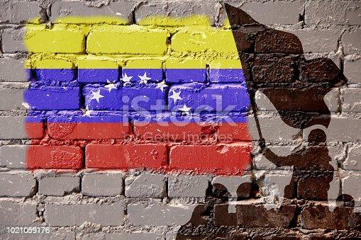istock Venezuela flag on wall 1021059176