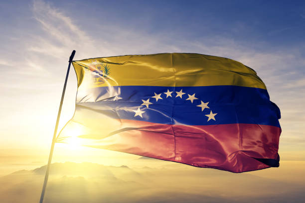 venezuela venezuelan bolivarian republic flag with coat of arms textile cloth fabric waving on the top sunrise mist fog - venezuelan flag stock photos and pictures