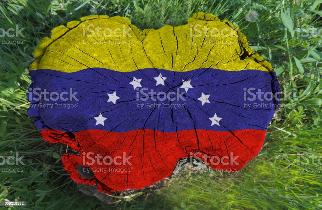 Bandera venezolana pintada sobre un tocón de árbol - foto de stock