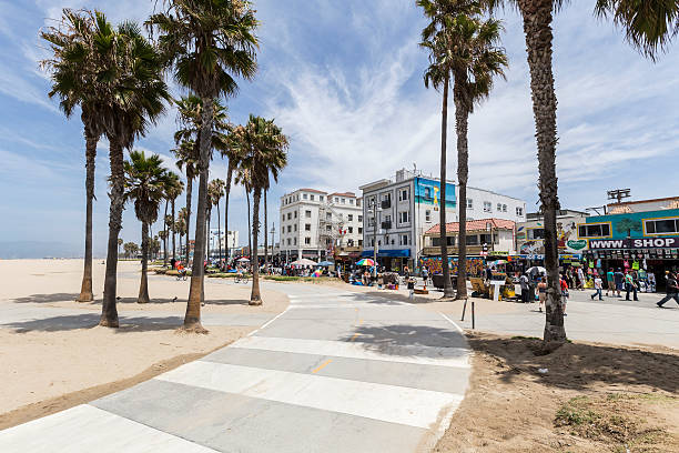 Venice Beach Bike Path Los Angeles, Claifornia, USA - June 20, 2014:  Sunny skies and palm trees along the popular Venice Beach bike path in Los Angeles, California. boardwalk stock pictures, royalty-free photos & images