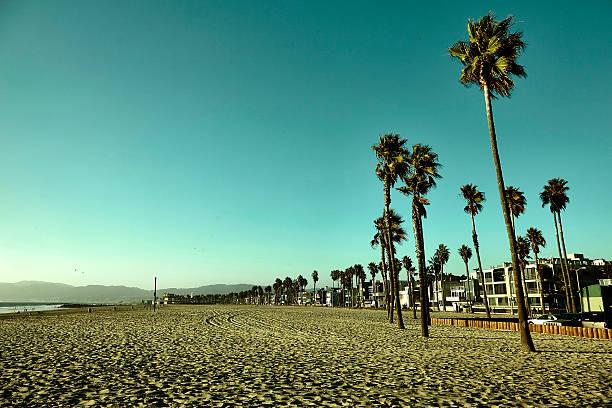 venice beach - venice beach in kalifornien stock-fotos und bilder