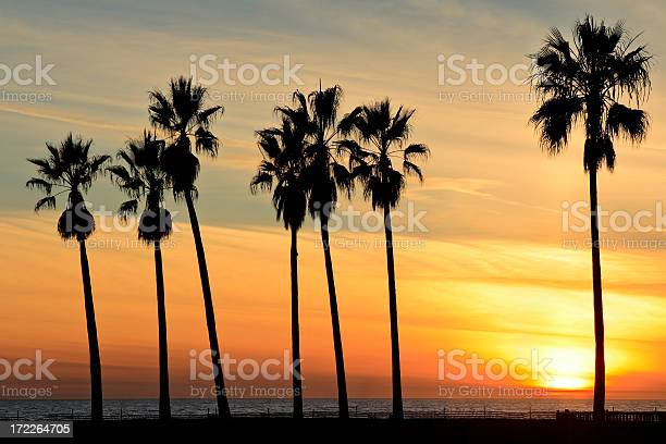 Venice Beach Sunset Stock Photo - Download Image Now