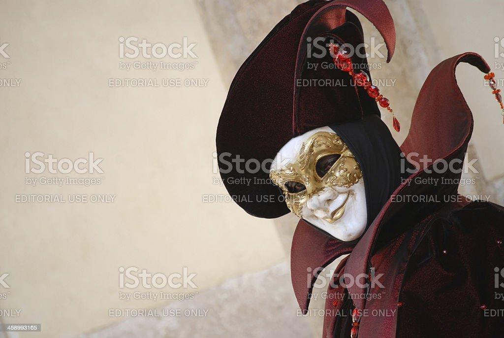 Venice Carnival 2009 stock photo