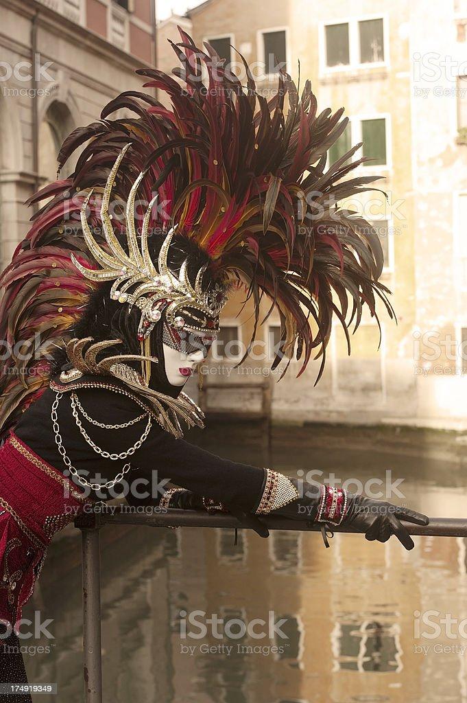 Venice Carnival 2013 royalty-free stock photo