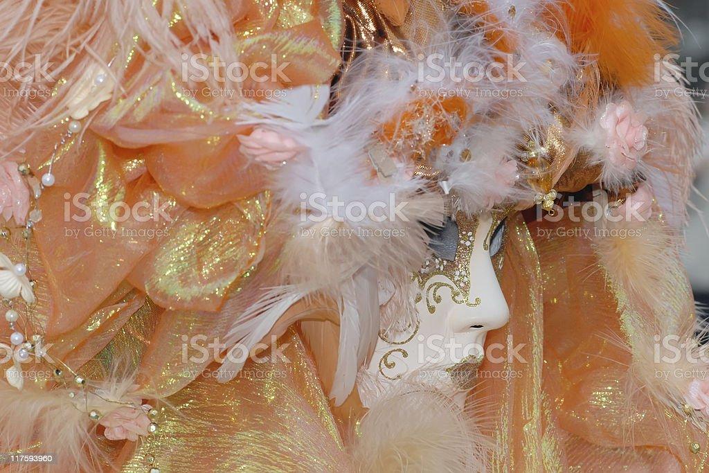 Venice carnival's masquerade royalty-free stock photo