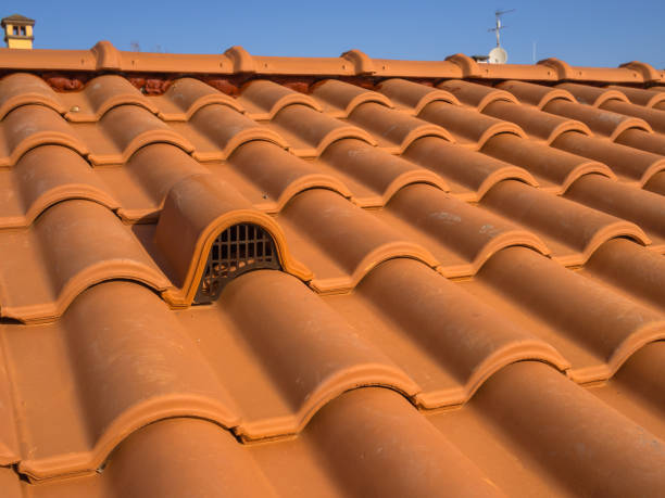 Ventilation mouth, with protection grid, with brick cover - foto stock