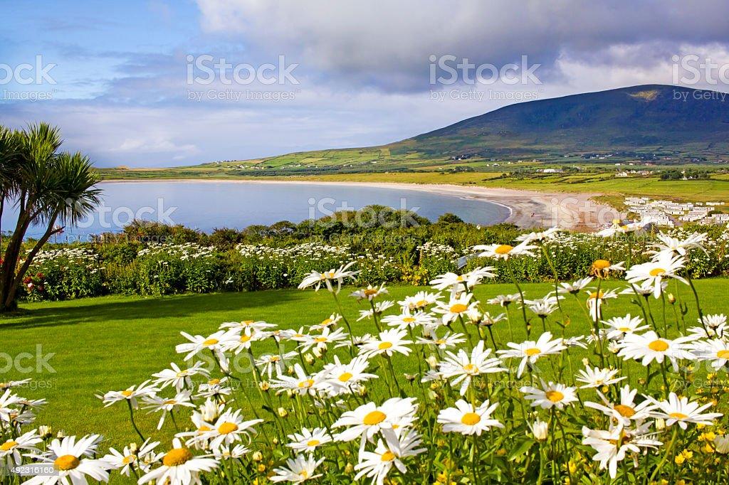 Ventry landscape, Ireland stock photo