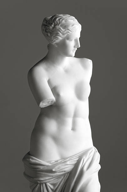 venus de milo on grey - sculptuur stockfoto's en -beelden