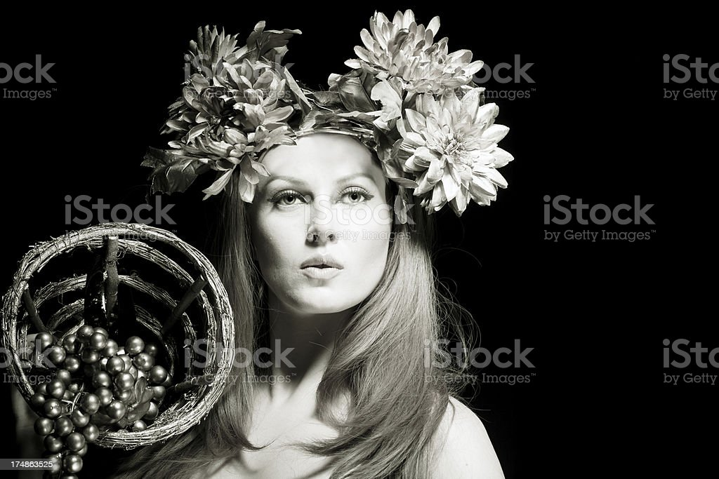 Venus stock photo