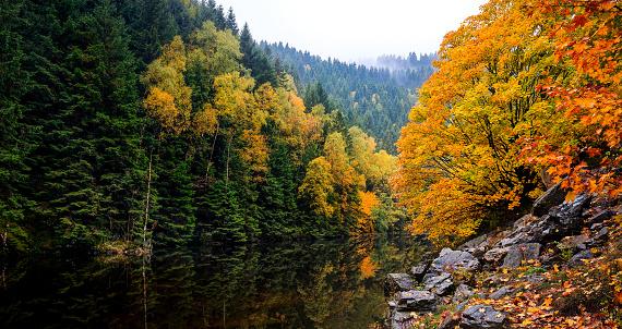 Verlobungsinsel in the river Oker
