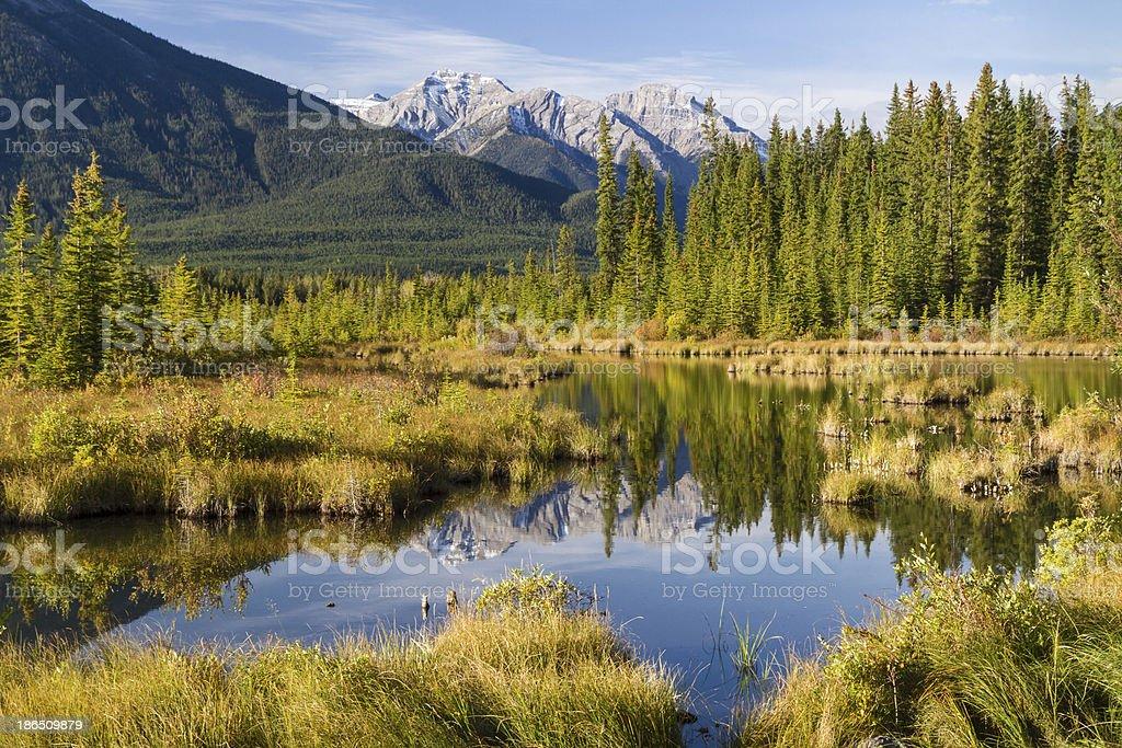 Vermillion Lakes Fenland royalty-free stock photo