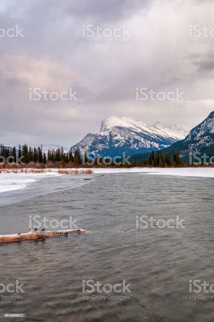 Vermillion Lakes foto stock royalty-free