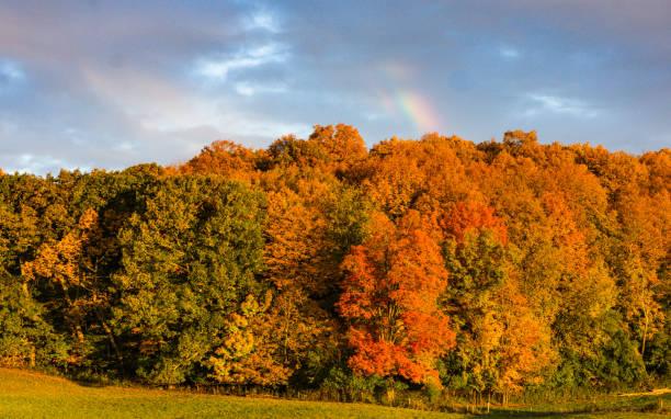 Vermont autumn foliage stock photo