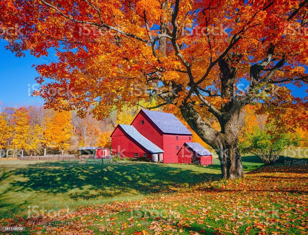 Fotografía de Vermont Otoño Con Rústico Barn y más banco de imágenes ...