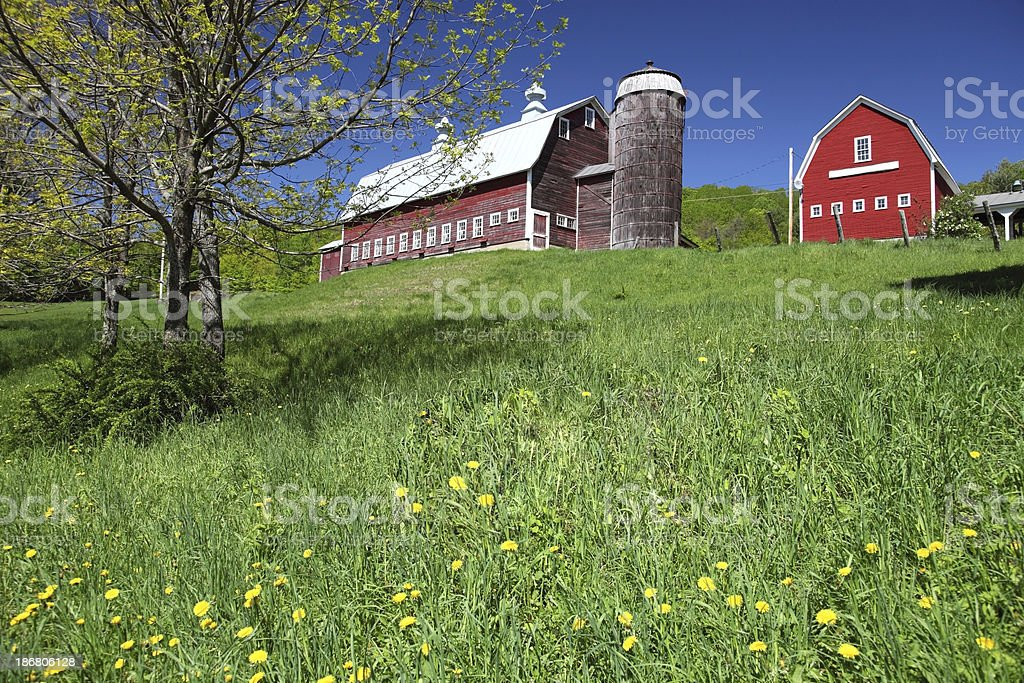 Vermont Countryside royalty-free stock photo