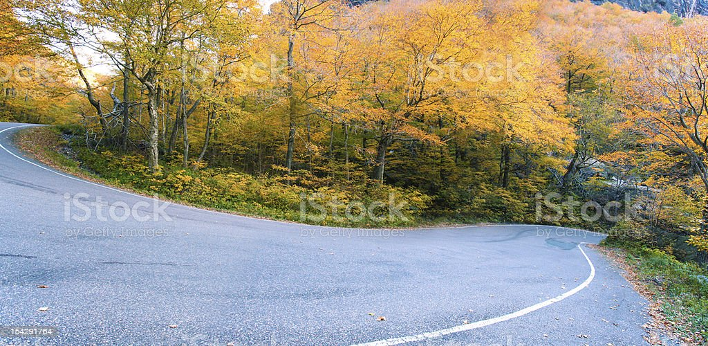 Vermont fall foliage, New England, US royalty-free stock photo