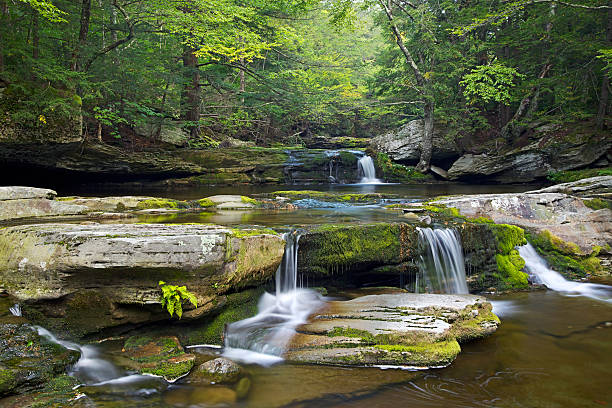 Vernooy Kill Falls Waterfall in  Catskill Mountains A cascading waterfall in the Catskill Mountains of upstate New York. catskill mountains stock pictures, royalty-free photos & images