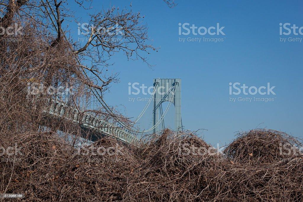Verrazano-Narrows Bridge stock photo