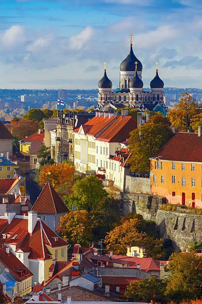 vertical aerial view old town, tallinn, estonia - estonya stok fotoğraflar ve resimler