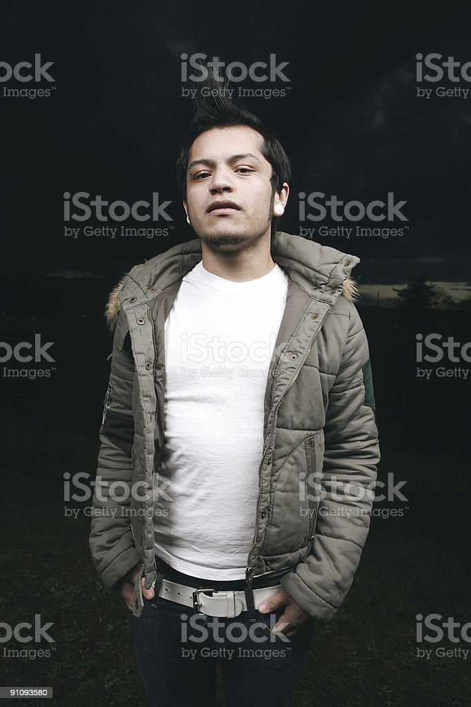Vertical Asian Mohawk Night Portrait royalty-free stock photo