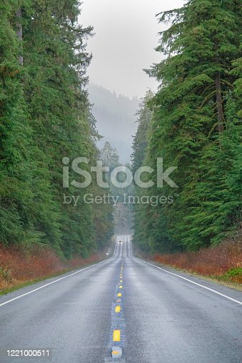 vertical: car in the foggy distance drives along a wet freeway crossing the gorgeous woods in the pacific northwest. tourists drive through the beautiful forest on the olympic peninsula in washington.