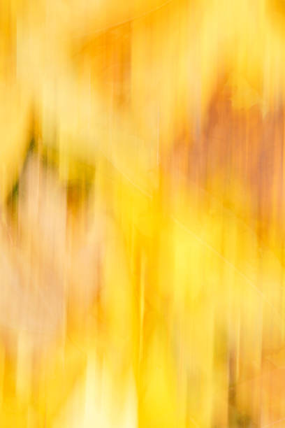 Vertical colorful fall background stock photo