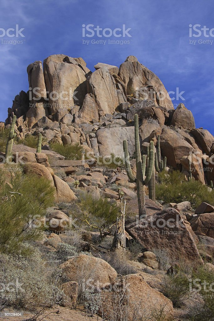 Vertical Desert scenic royalty-free stock photo