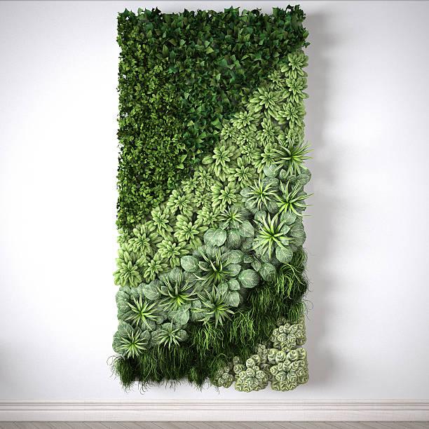 Vertical garden, interior design stock photo