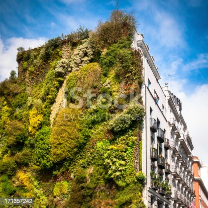 Vertical Garden in Madrid. Spain.