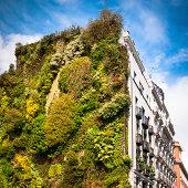 Vertical Garden in Madrid. Spain.