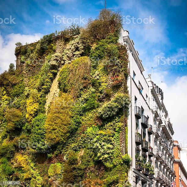 Vertical Garden In Madrid Stockfoto und mehr Bilder von Architektur