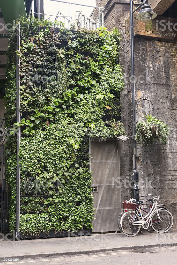 Vertical Garden of Lush Green Plants stock photo
