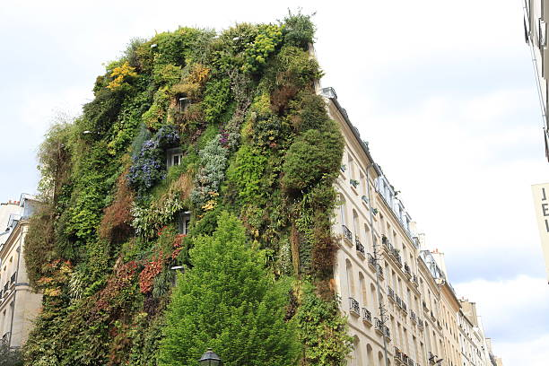 Vertical garden on façade of residential building in central Paris – Foto