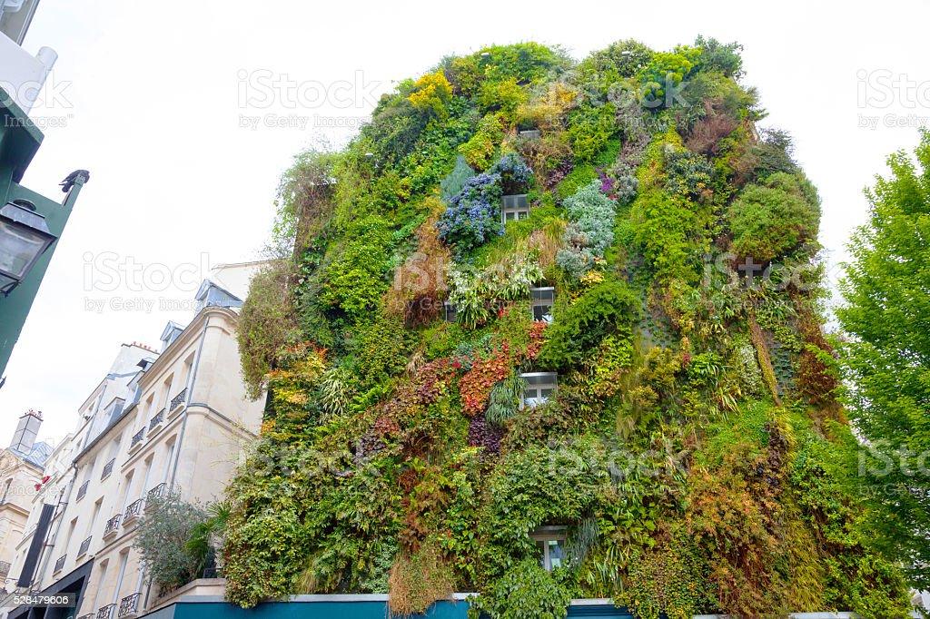Vertikal Garten in Wohngebäude in der Innenstadt von Paris – Foto