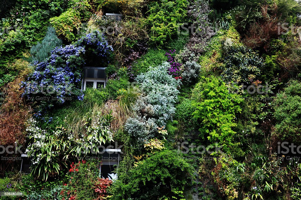 Vertical garden on residential building in central Paris stock photo