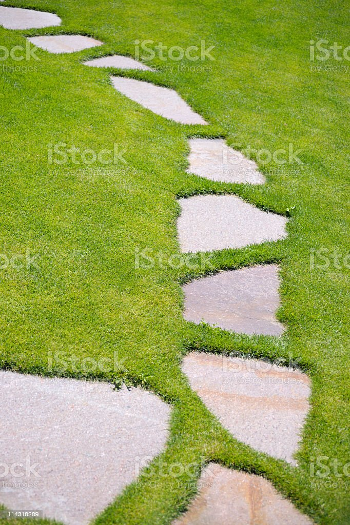 Vertical garden stepping stone path through green grass for Stone path in grass