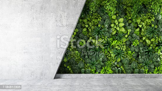 istock Vertical Garden with Empty Wall 1184812305