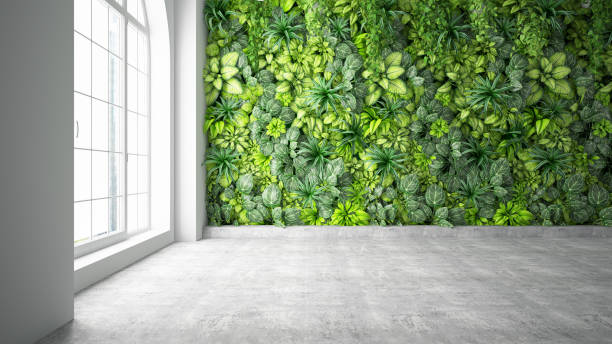 Vertical Garden with Empty Wall stock photo