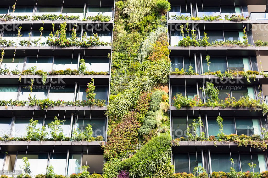 Vertical Gardengreen Wall On Apartment Building Sydney
