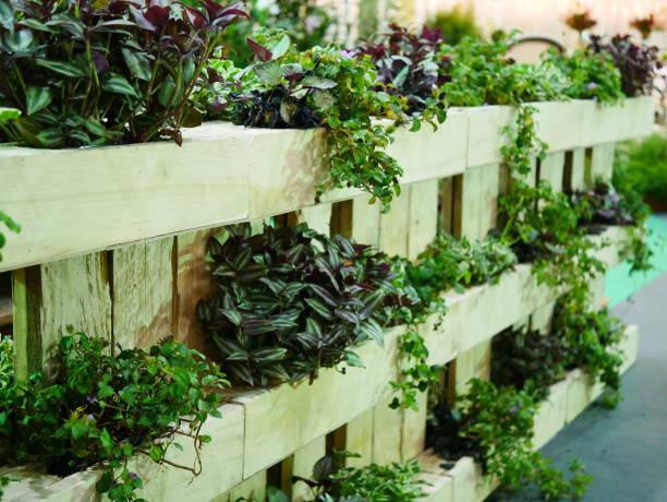 Vertical green garden stock photo