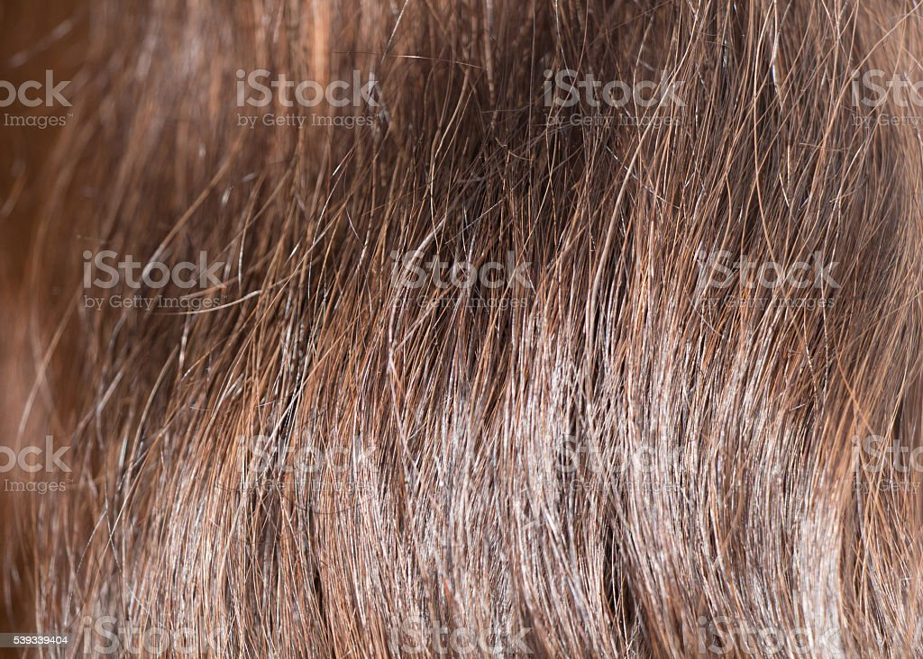 vertical hair backround stock photo