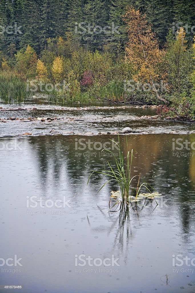 Vertical Image of Northern River and Reflections stock photo