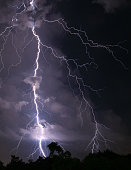Vertical Image of Scary Real Lightning Striking over the Forest at Night