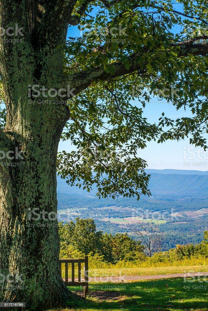 Vertical image of Shenandoah Valley Virginia stock photo